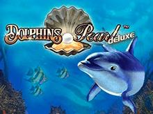 Dolphin's Pearl Deluxe Играй на реальные деньги