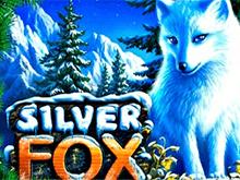 Автомат Silver Fox в виртуальном казино